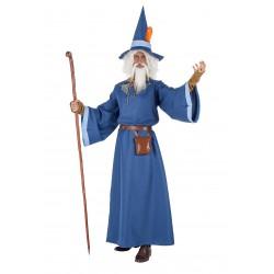 Disfraz Mago Azul