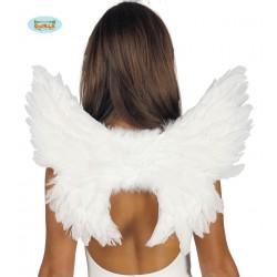 ALAS ANGEL PLUMAS
