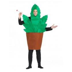 Disfraz de Maceta Planta María